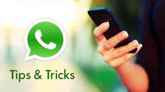 Cara Mudah Melihat Orang yang Sering Intip Profil WhatsApp Kamu
