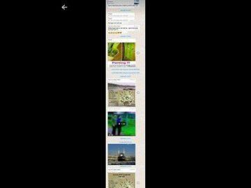 5 Langkah Mudah Screenshot Chat Panjang di WhatsApp, Install Aplikasi Ini!