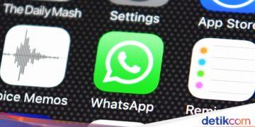 Fitur Baru WhatsApp Kasih Info Berapa Kali Pesan di-Forward - Detikcom