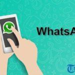 Cara Gampang Mengecek Siapa Saja yang Sudah Baca Pesanmu di Grup WhatsApp