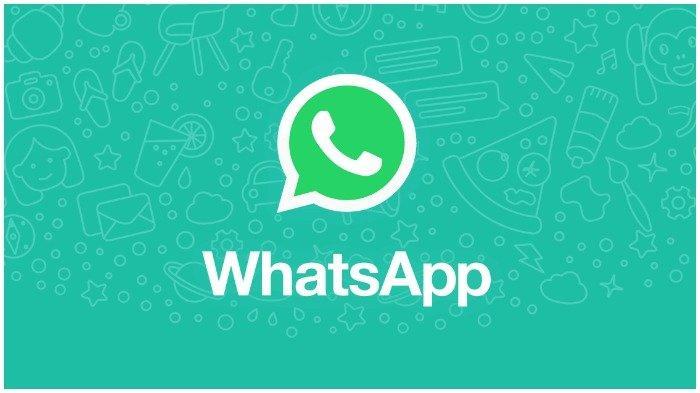 Cara Mudah Membuat dan Mengirim Video GIF Lewat WhatsApp