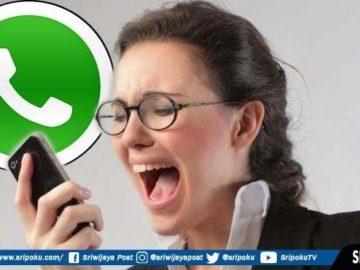 3 Cara Menghubungi WhatsApp Seseorang yang Memblokir Anda, Dijamin Berhasil Tanpa Aplikasi Tambahan
