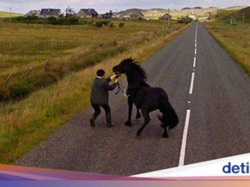 Aksi Hewan yang Tak Sengaja Tertangkap Kamera Google Street View - Detikcom