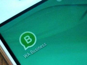 Kini Ada WhatsApp Business untuk Kamu yang Punya Usaha, Simak Begini Cara Penggunaannya