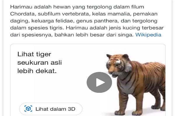 Google Punya Fitur Hewan Virtual Berbasis Augmented Reality