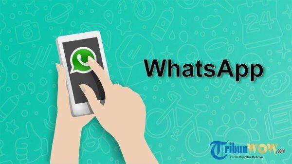 Langkah Mudah Insert Link Di Status Whatsapp Wa Gampang