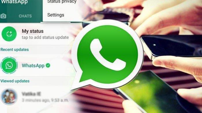 Cara Agar WhatsApp WA Tidak Disadap Orang