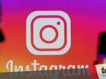 Instagram uji coba fitur Group Story seperti di Facebook